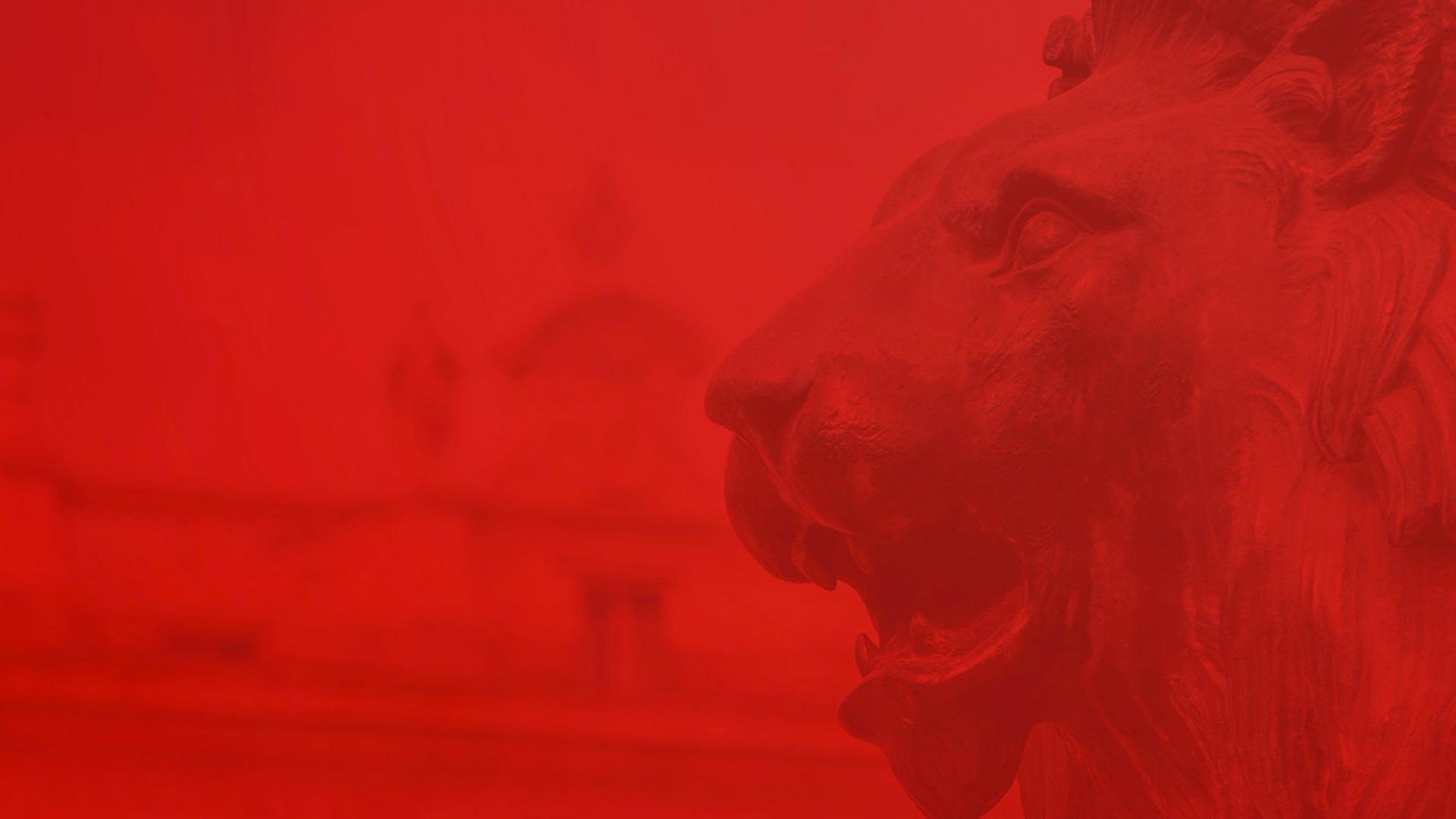 leoes-header